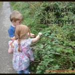A Foraging Adventure Part Two