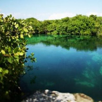 Cenotes in the Yucatan Peninsula