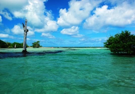 eco resort Riviera Maya