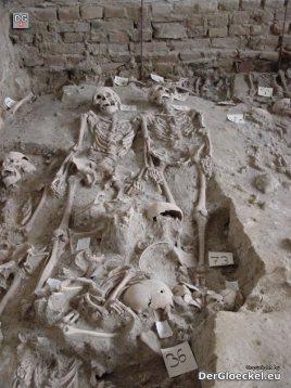 Skelette - Friedhof im Klassenzimmer