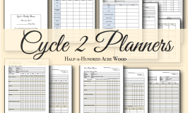 Cycle 2 Weekly Planners