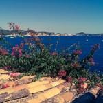 Mallorca Paguera Urlaub 16