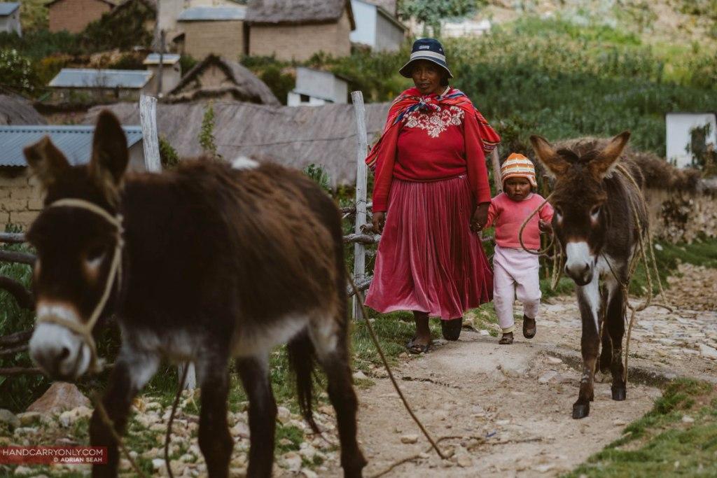 mother child and livestock bolivia