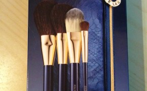 Estee Lauder make up brush collection