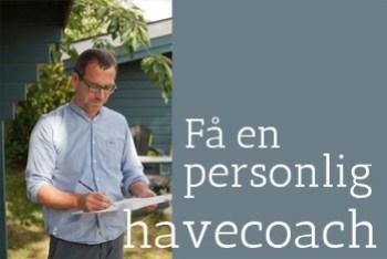 havecoach