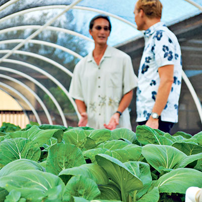 Two men standing near aquaponics garden