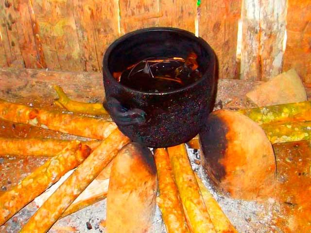 ayahuasca_g3