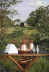 Hayward's Safaris Luxury tented safaris