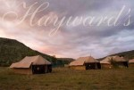 Hayward's tented camps