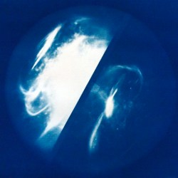 Cyanotype_Artemisia 3 – 2014 – 60x48cm