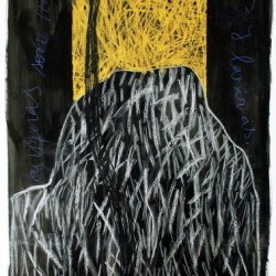 serie viboras gd dessin 300 x 150 /2001