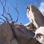 Meet Cory Hanson:  Old Pueblo Bouldering and The Bloc in Tucson Arizona