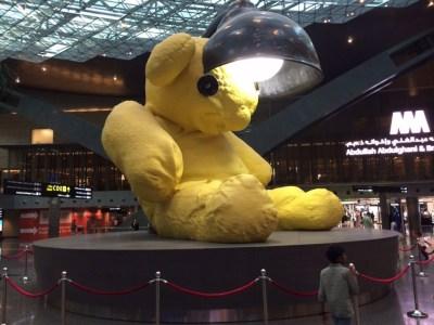 Hamad International Qatar Doha bear