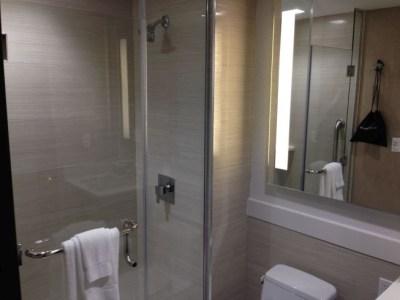 holiday inn brooklyn downtown bathroom shower