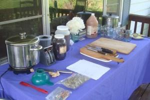 medicine making class Sandi Ford