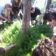 Students gathering cleavers.