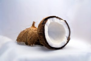 Coconut, interior view