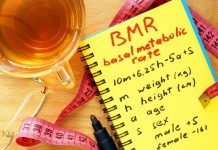 maintain resting basal metabolic rate
