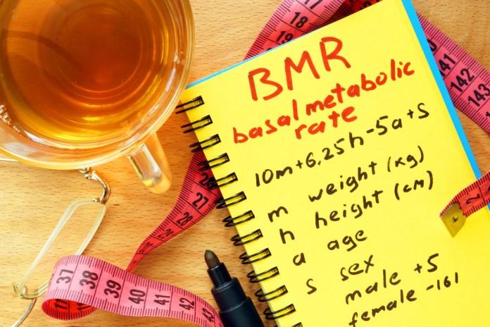 maintain resting basal metabolic rate