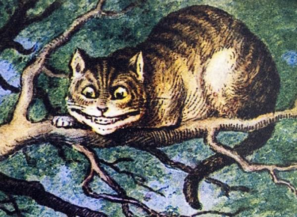 schesire cat