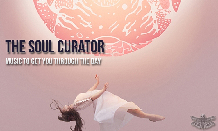 thesoulcurator