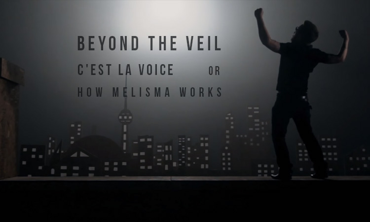 beyond the veil cest la voice