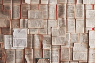 Mass of books bolted to a wall.