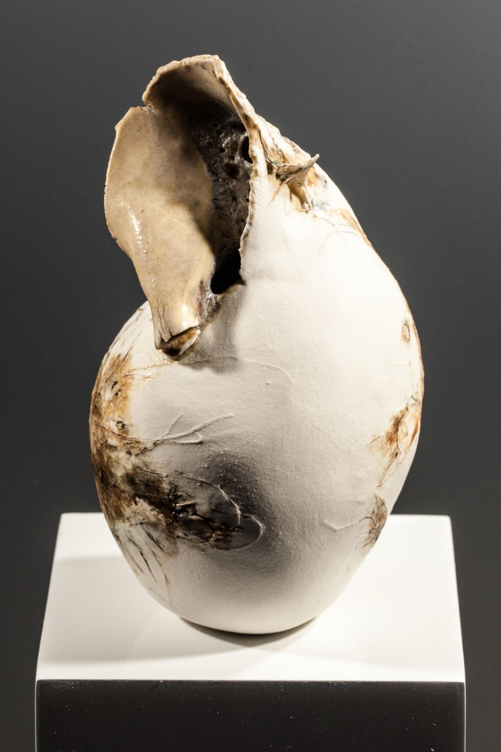Helen-Shanks-porcelain-1