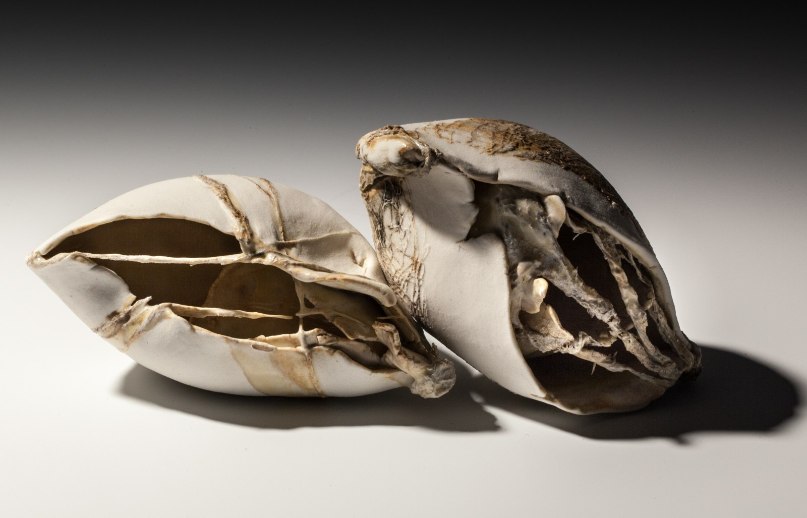 Helen-Shanks-porcelain-117