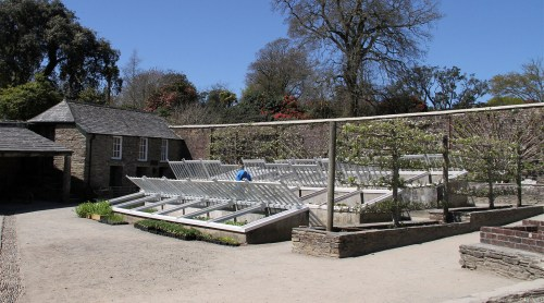 Medium Of Walled Vegetable Garden