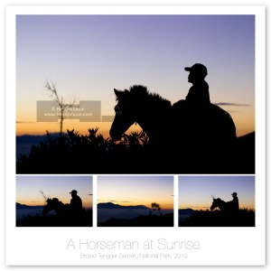 A Bromo's Horseman at Sunrise