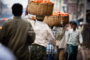 Carrying Tomatoes