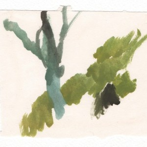 Catacomb tree (Malta). Watercolour on paper. SALE PRICE £100 / framed £125.