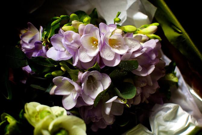 Cowdray Walled Garden Wedding Photography