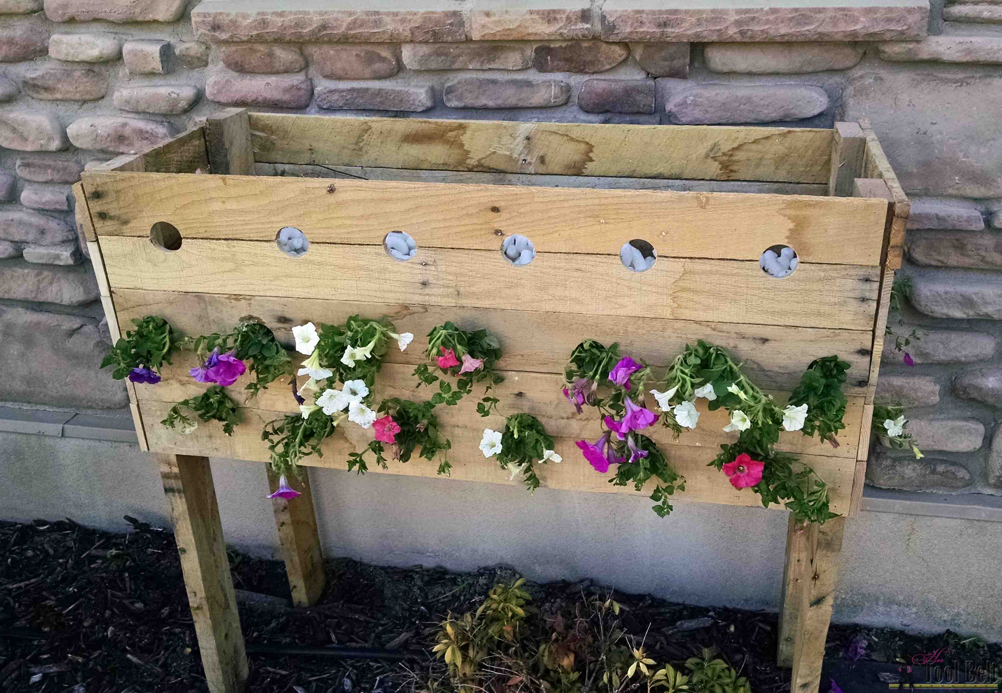 Check out these flowers - DIY pallet planter box for those amazing ...