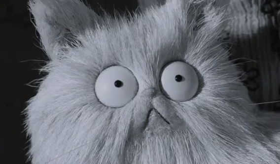 Frankenweenie cat The HeyUGuys Instant Watching Guide   August 19th 2013