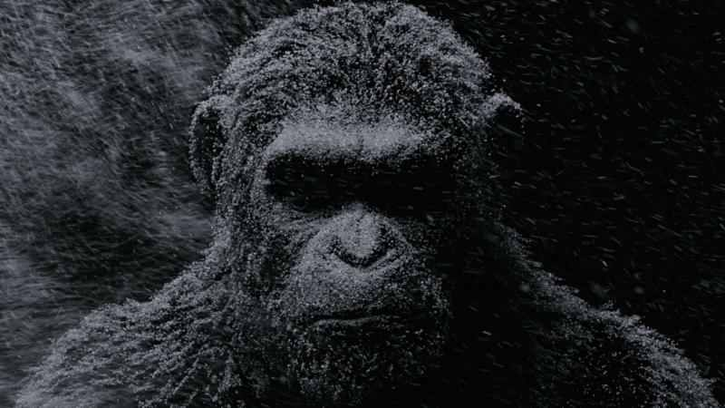 NYCC: War for the Planet of the Apes motion poster released