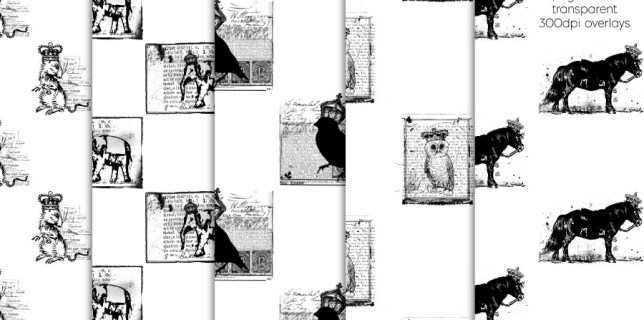 Free download ~ animal transparent overlays ~ courtesy of hgdesigns.co