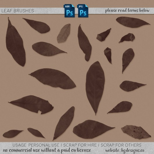 Free download ~ photoshop leaf brushes plus jpg image sheet