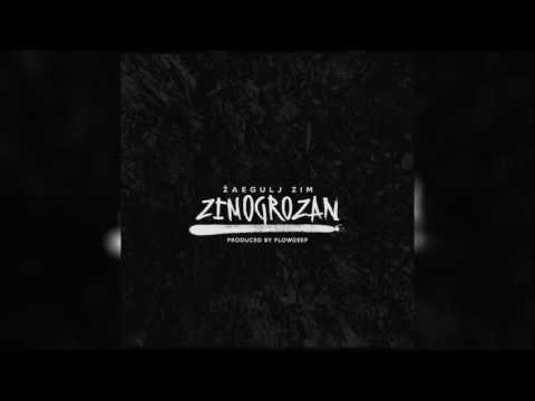Žaegulj ZIM & Flowdeep - Grob (Audio)