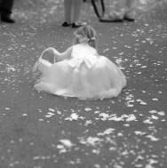 Collecting confetti