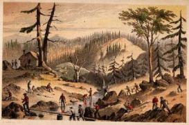 California gold rush, illustration