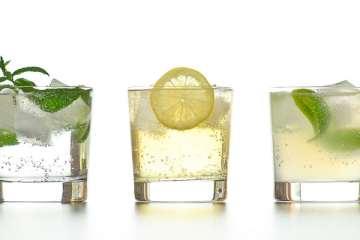 Gin & Tonic Variationen