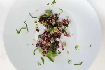 salat-von-zweierlei-bohnen-bulgur