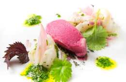 kabeljau-carpaccio-mit-shiso-kressen-sorbet-3