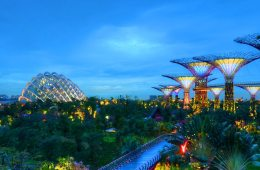 singapur-gardens-by-the-bay_thumb