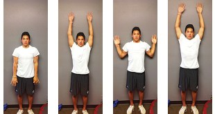 shoulder-mobility