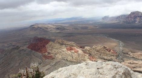 View from Turtlehead Peak