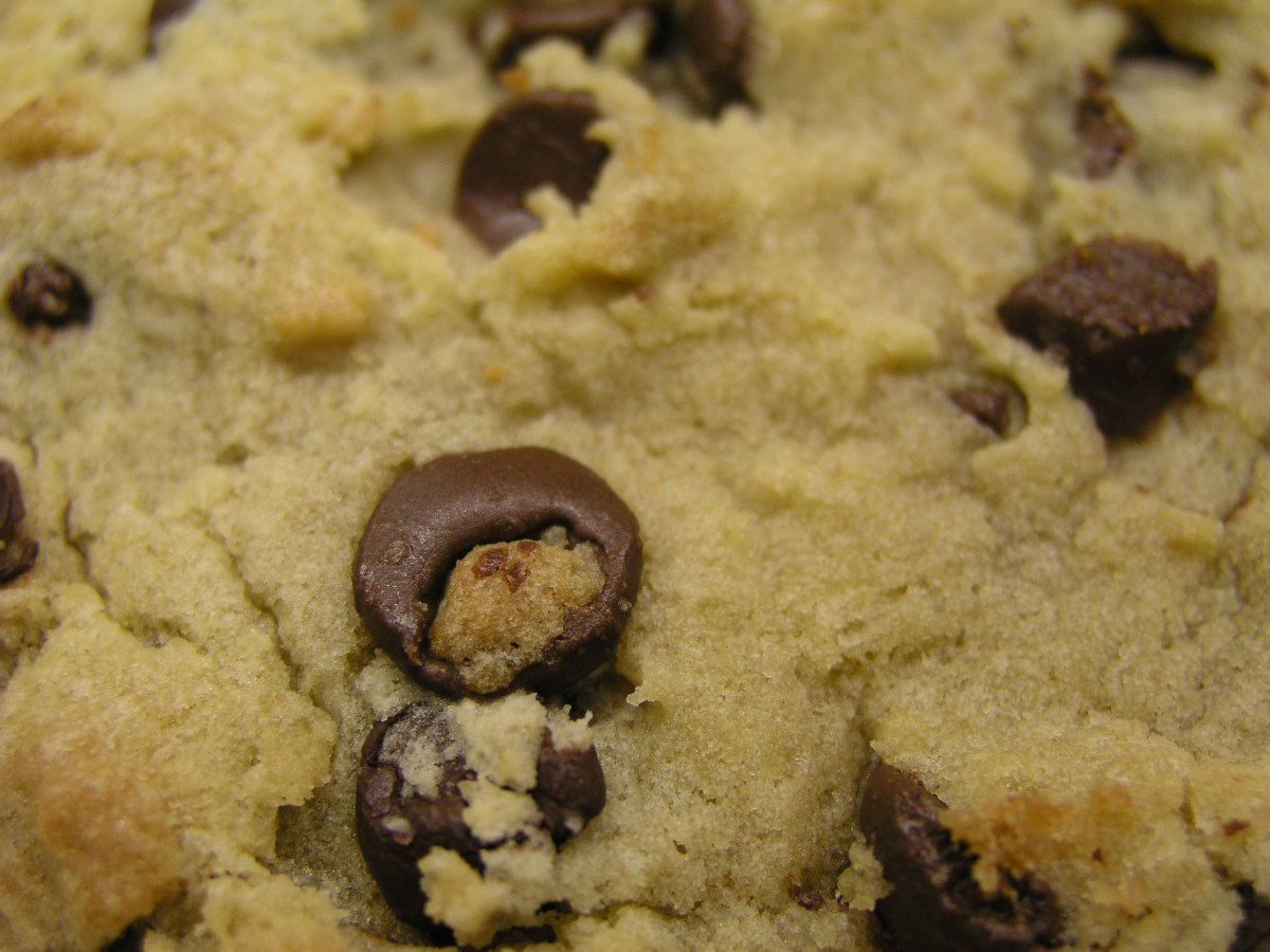 There's nothing more disgusting than warm chocolate chip cookies right out of the oven, right?