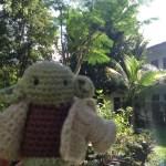 Garten im Costa Brava